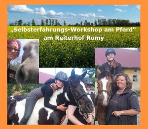 CollageSE_Pferd