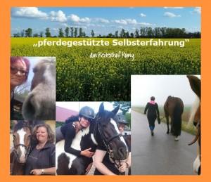 pferdegestützte Selbsterfahrung