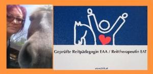 reitpäd_collage